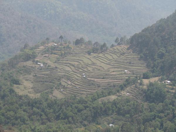 Nainital Kaladhungi Road