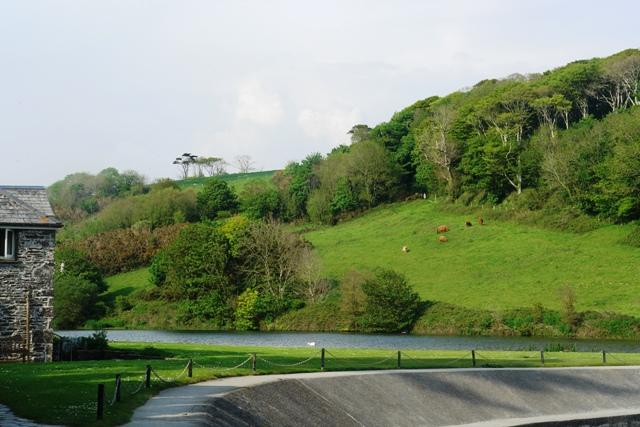 The setting of Manderley in Rebecca
