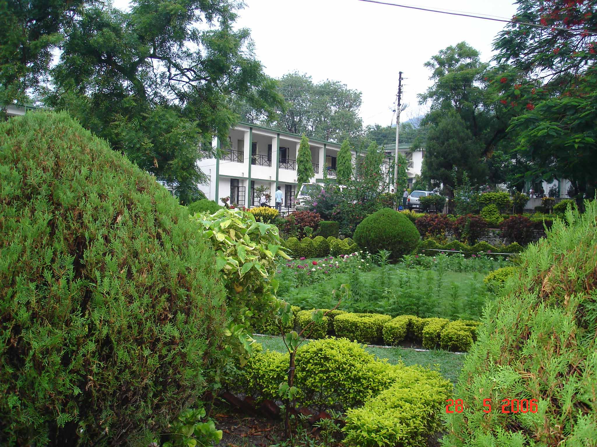 The lawns, TRH, Muni ki Reti