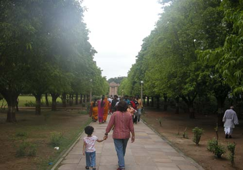 Lined by Ashoka Trees