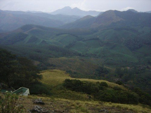 View from Eravikulam National Park - 1