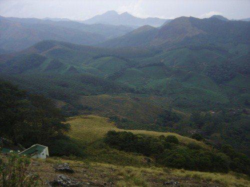 View from Eravikulam National Park - 1