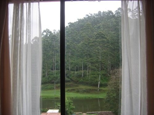 View from hotel-One of the river from Munnar