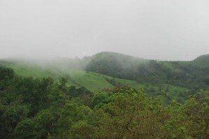 Hills of Kodachadri