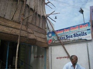 Kalam's brother Sea Shell shop