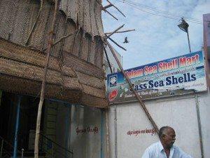 Kalam's brother Sea Shell shop