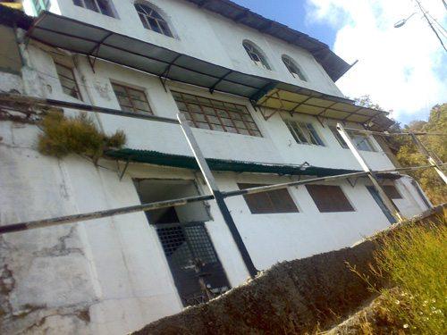 image-17-ivy-cottage