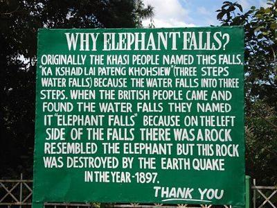 Elephant fall
