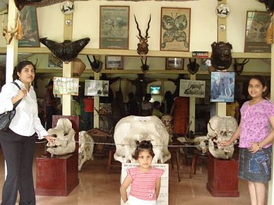 Lady Hydari Park - Forest Museum