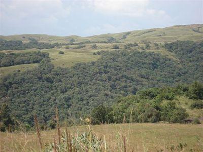 View from Nohkalikai Fall Park