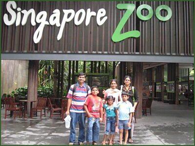 singapore-zoo_opt
