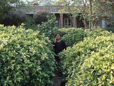 Garden of Five Senses not a tea Garden
