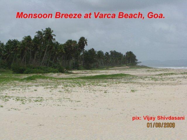 beach(7)