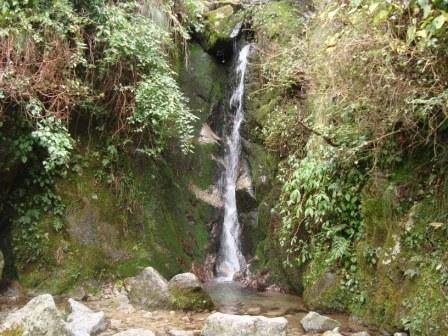 Waterfall.... with Medicinal Properties