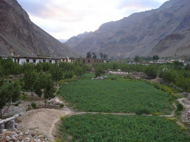 The green fields of Tabo
