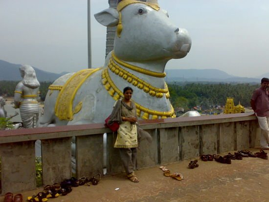 Nandi in front of shiva statue