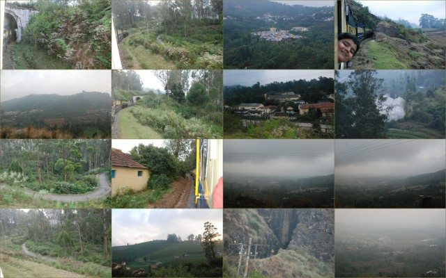 Just a few views from the train