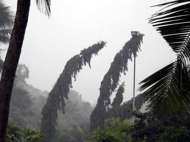 Rain Scene Kerala
