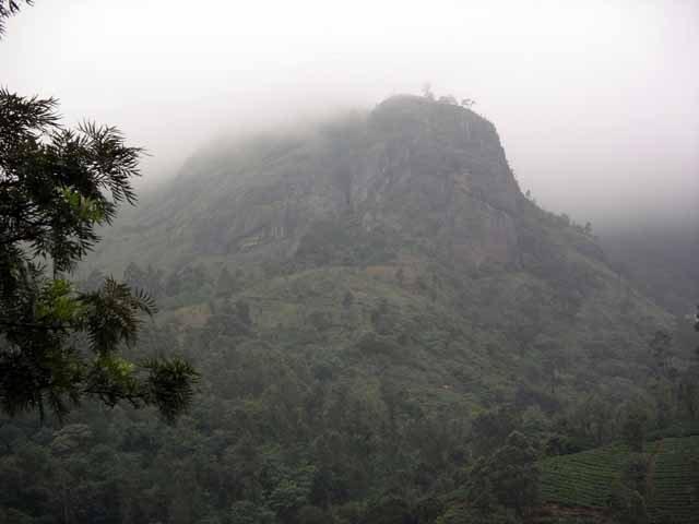 Beautiful Misty Hills