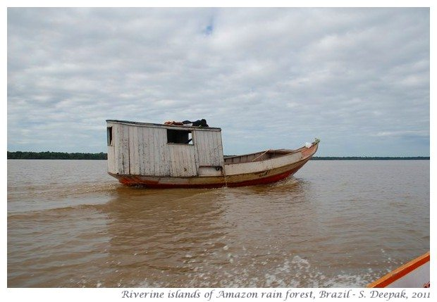 River islands in Amazon rain forest
