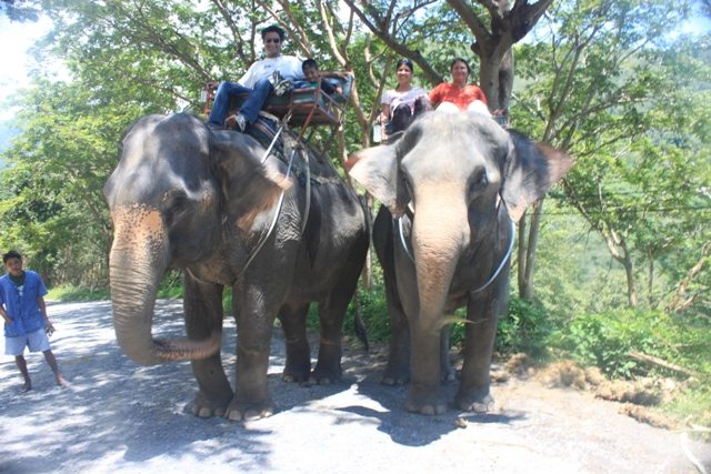 First stop - an elephant ride