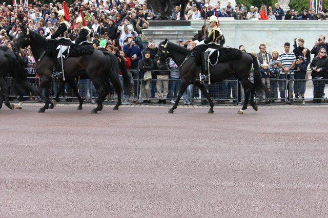 Buckingham Palace II