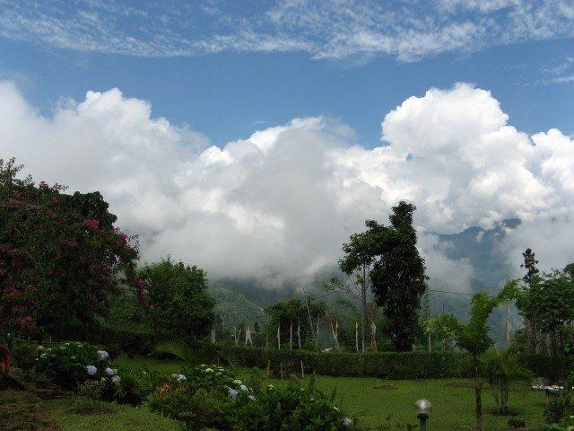 Views from verandah