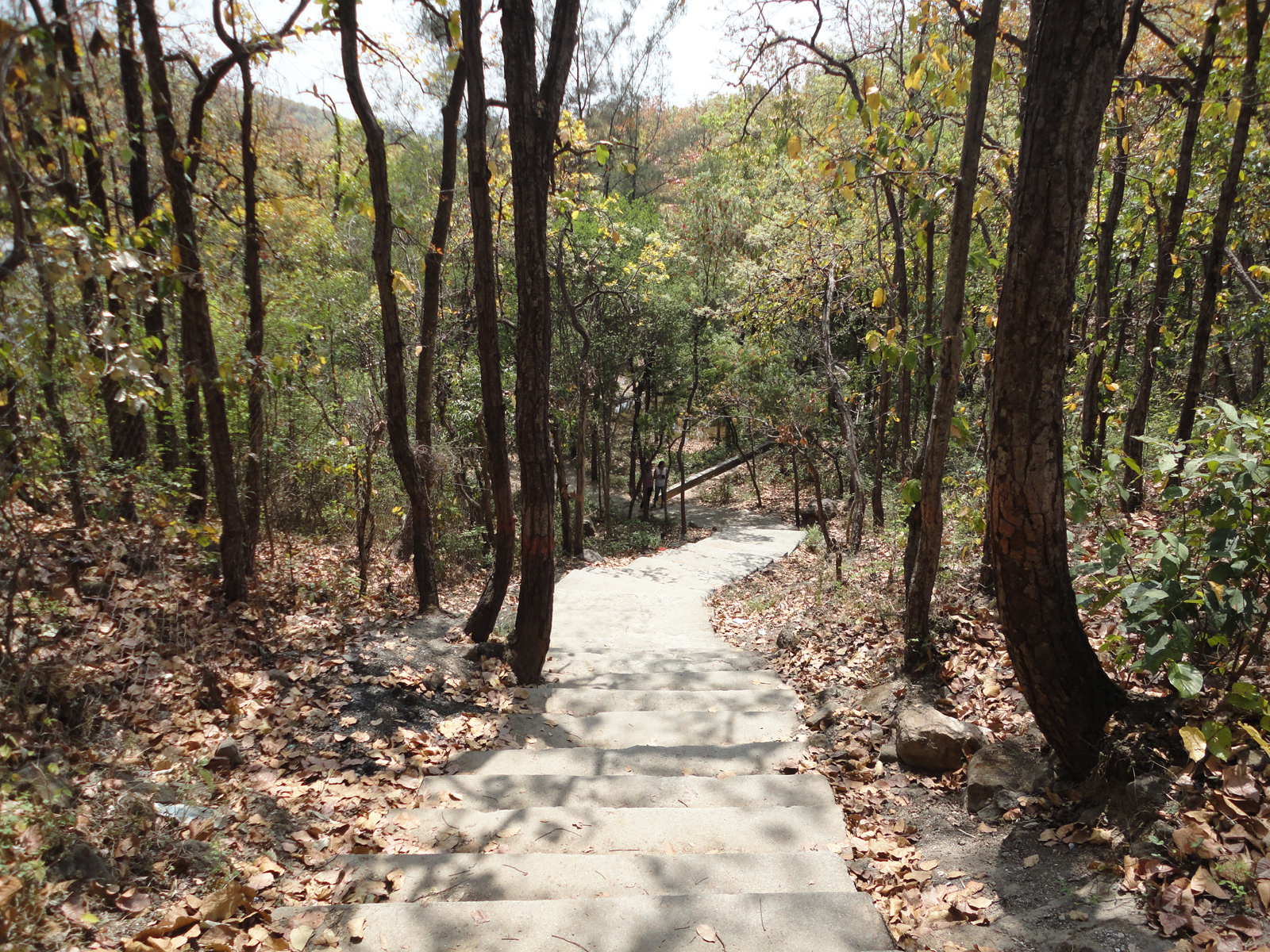 ghumakkar 9 vinay rajput malsi deer park dehradun