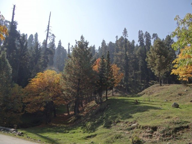 The drive from Gulmarg