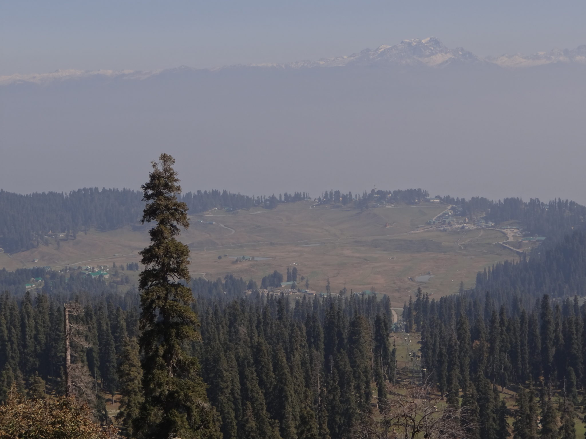 The meadow of Gulmarg from the gondola
