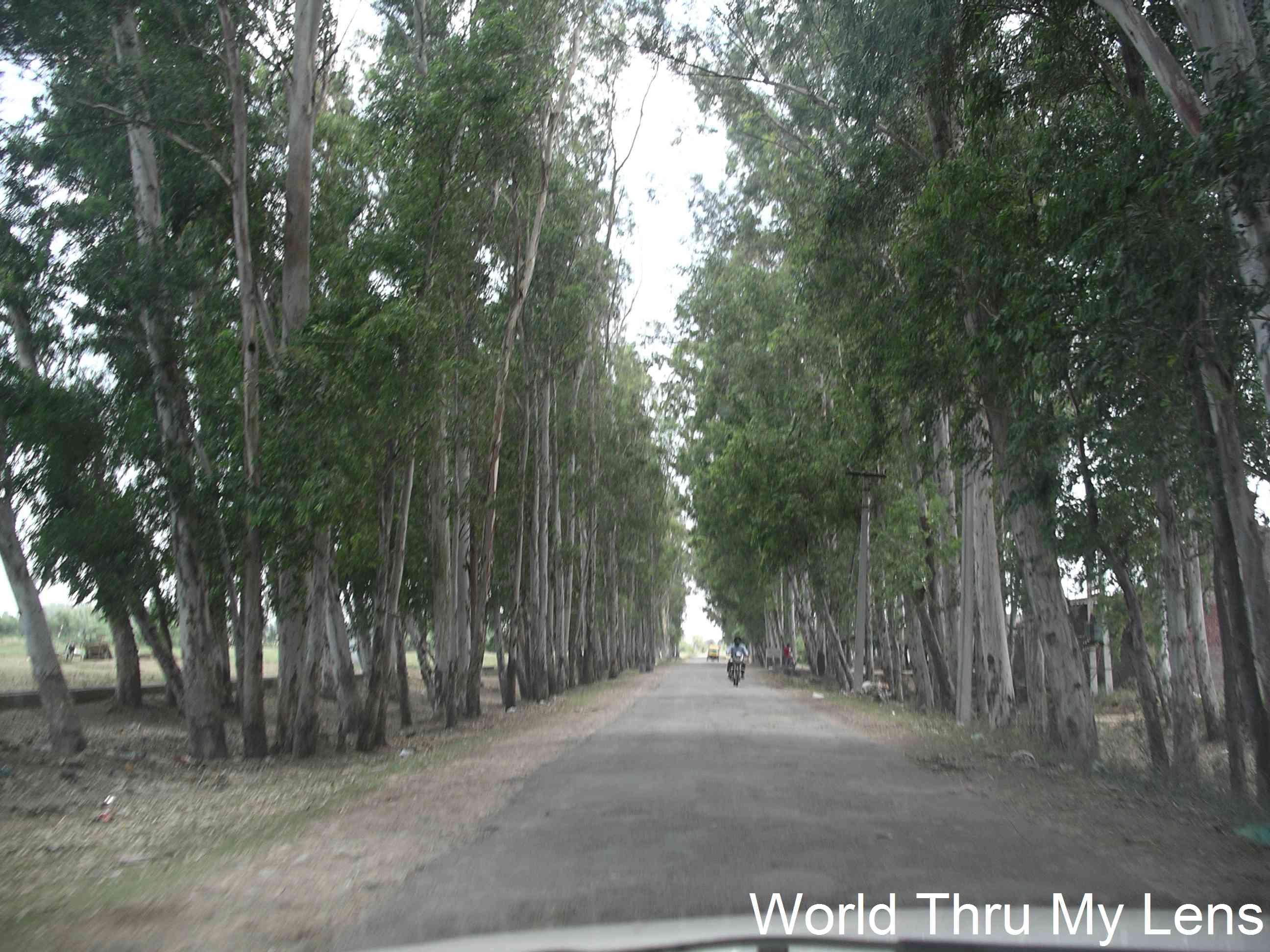 On the way to Suchetgarh