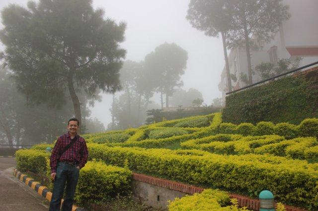 The manicured resort gardens among the rain and haze