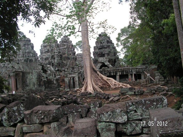 Ta Prohm Temple and Silk-cotton trees vying for space