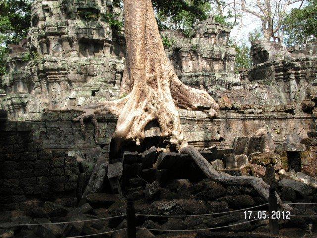 Roots spreading around a door – stones crumbling