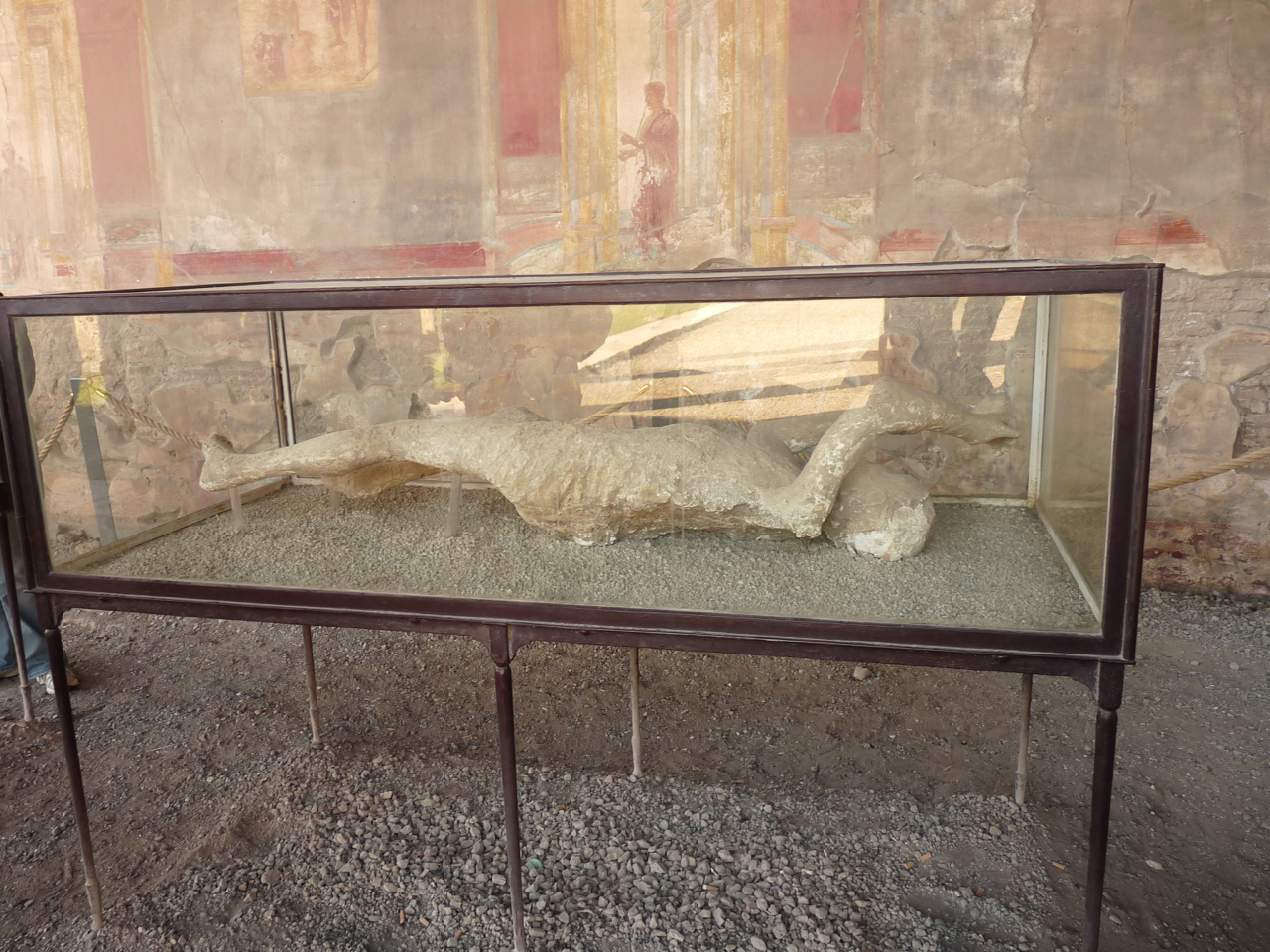 Plastered body of pompeii victim