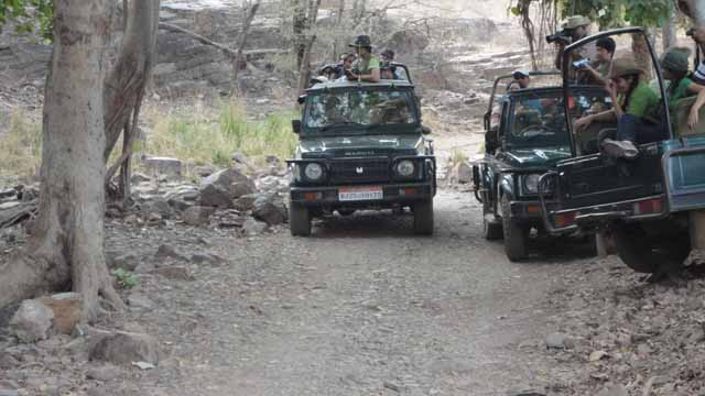 Misuse of govt vehicle