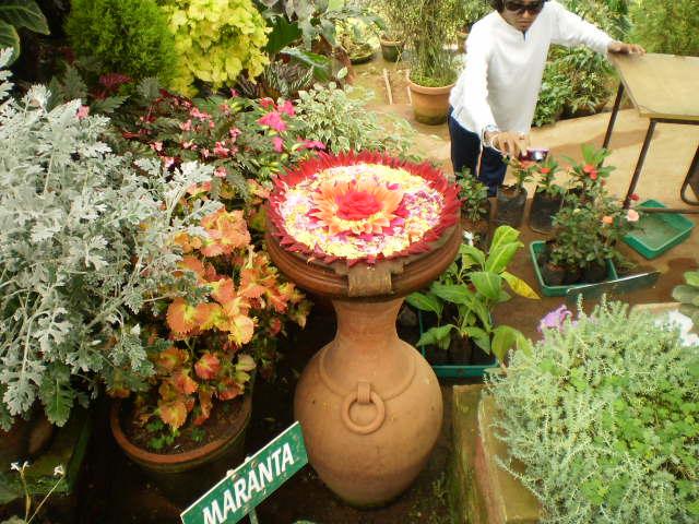 At Flower Garden