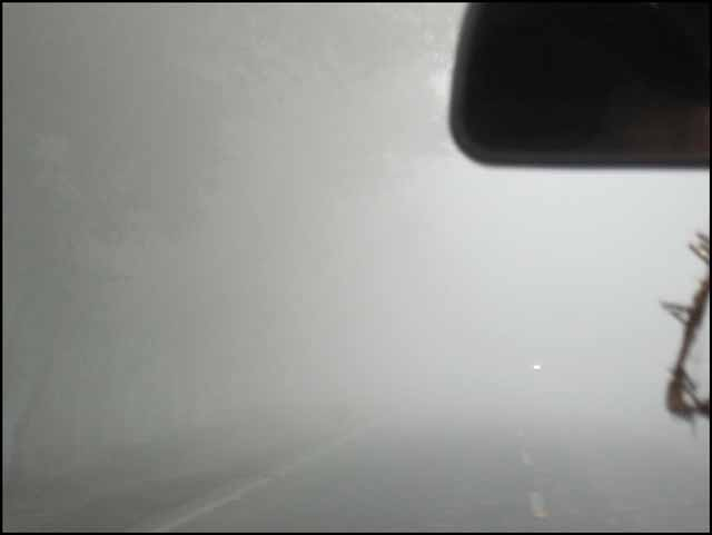 Fog on road..the way to Rampur.