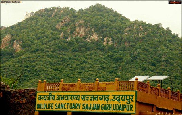 sajjangarh sanctuary1