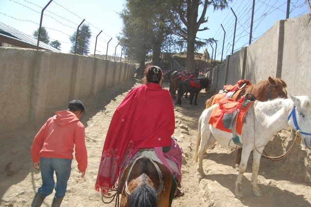 An uphill journey with all pervading smell of mule's crap
