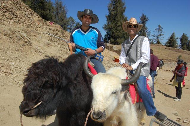 'Gora aur Kala' - the two yaks.