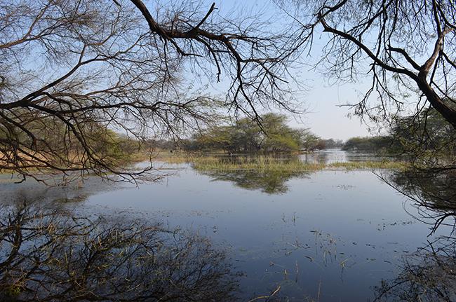 Lake, full of water
