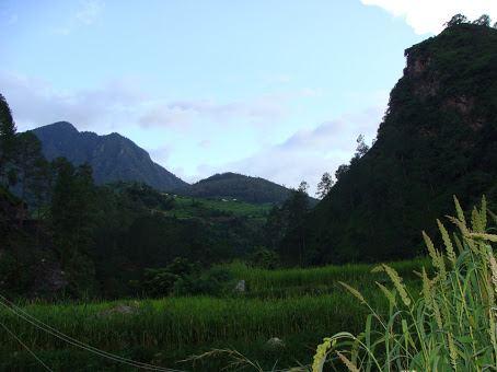 Thalan area