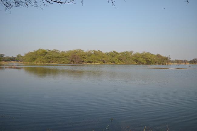 Lake, full of water. Did you notice deers?