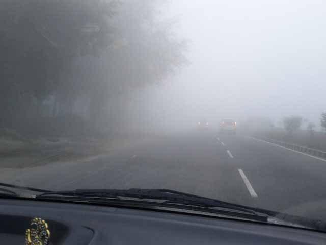 Fog @ Del Agra