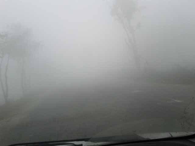 Fog@DA1