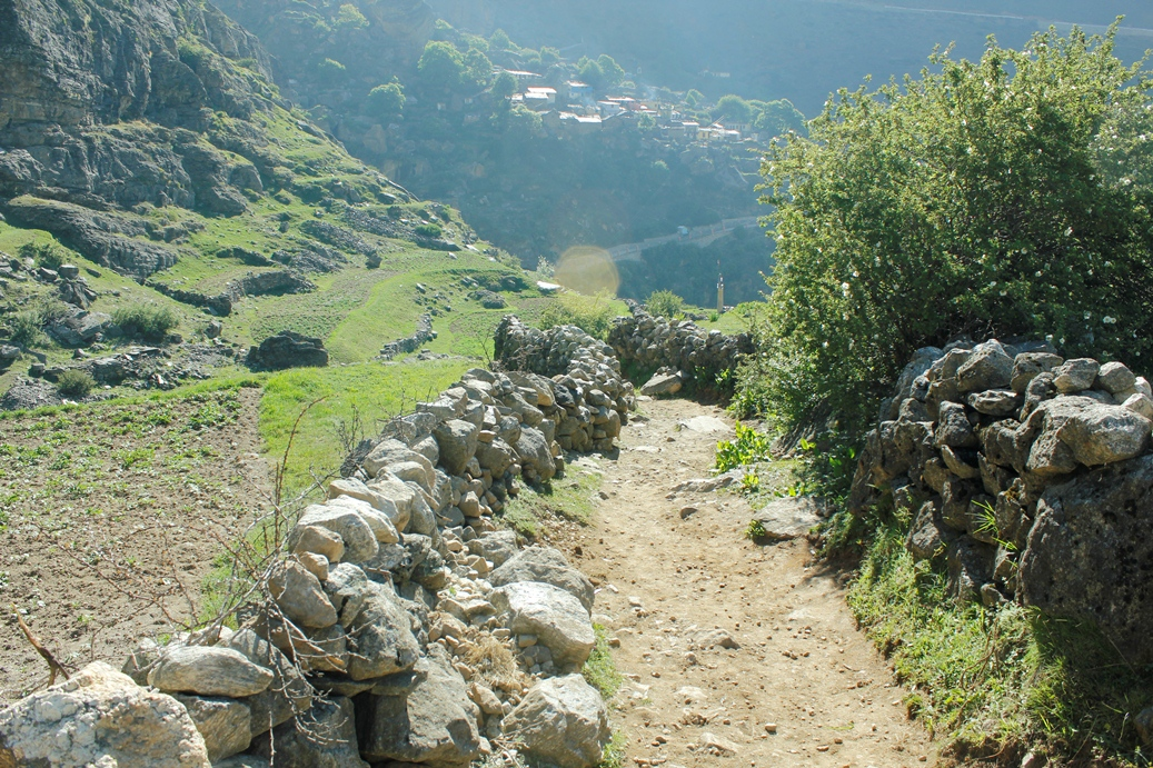 Path leading towards Vasudhara falls (Mana village in the background)