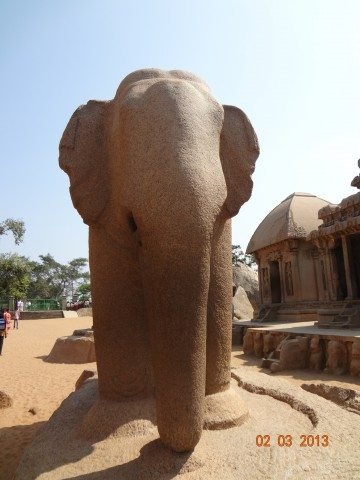Huge Elephant at Pancha Ratha