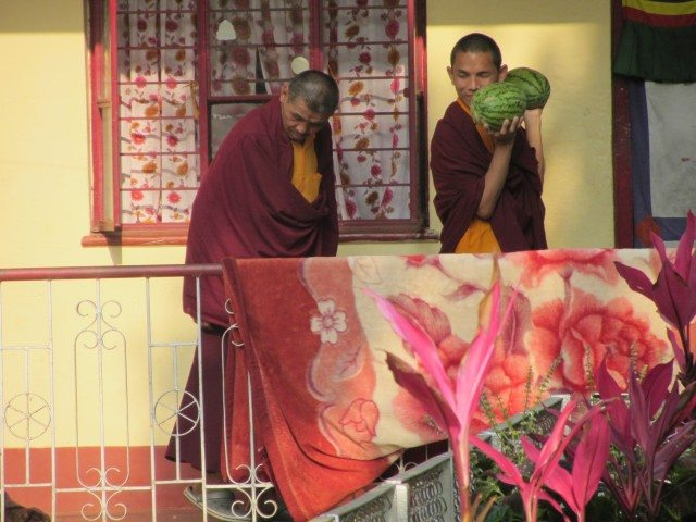 Monks in their colorful red robes