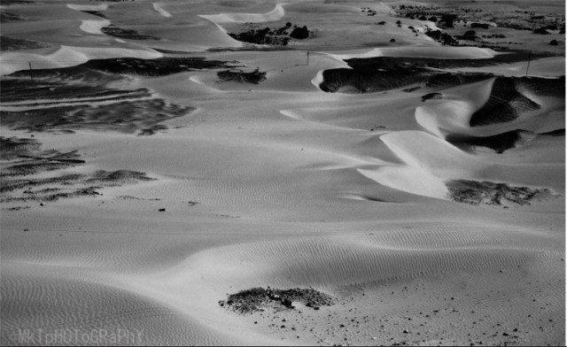 ये फोटो मनोज के कैमरे से।